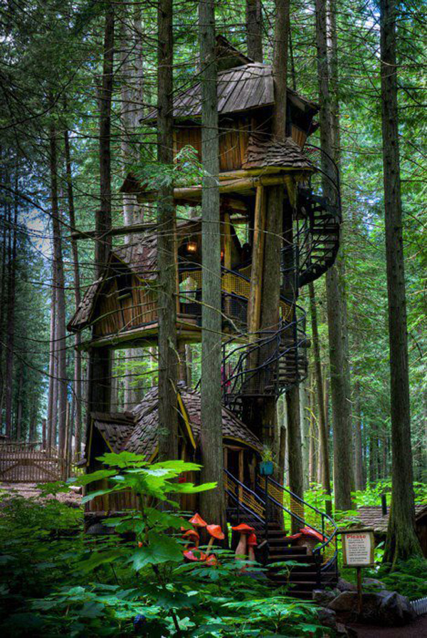 A27_fairytale treehouse