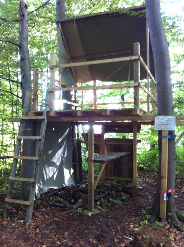 Ringlikon treehouse 2