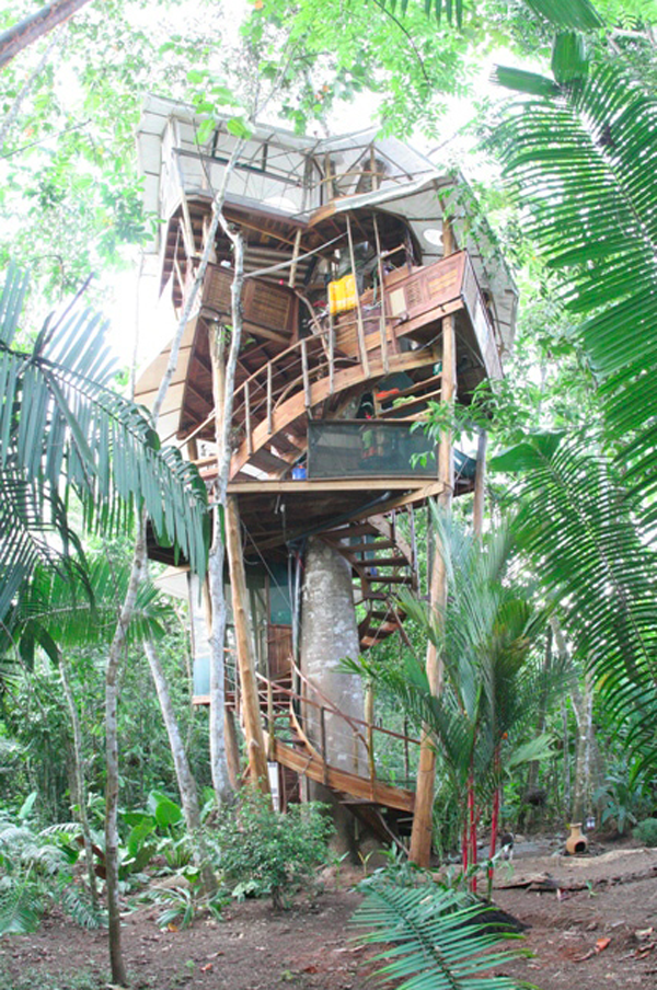 Lapa's Nest Treehouse1