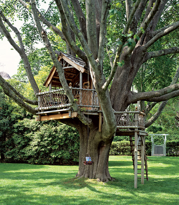 A68_A big treehouse
