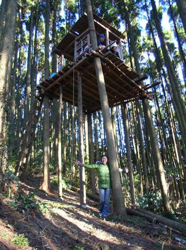 treehouse masters mirrors gankoyama tree house village hometreehome