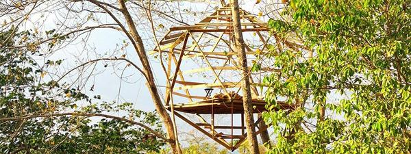 icosahedron treehouse 4