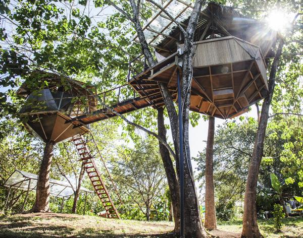icosahedron treehouse 7
