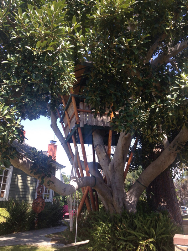 venice beach treehouse 1