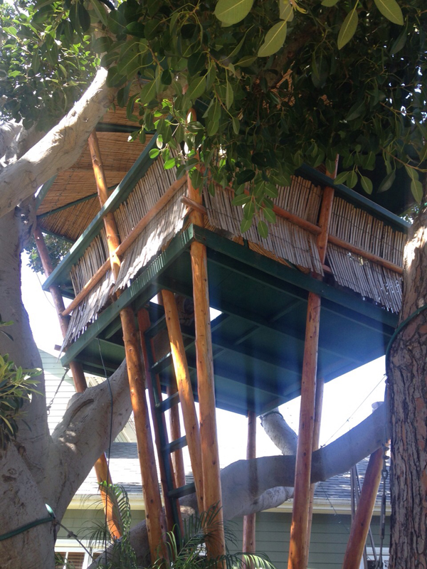 venice beach treehouse 2