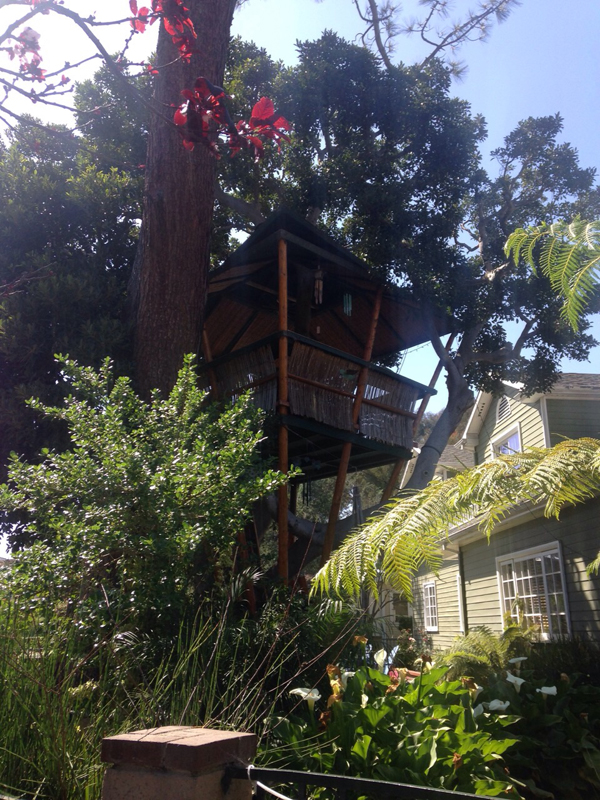 venice beach treehouse 3
