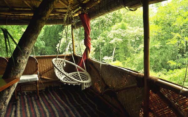 Relax at the honeymoon tree house