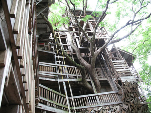 its gods treehouse he keeps watch over it said burgess who received his inspiration in a vision that came to him in 1993 - Biggest Treehouse In The World 2015
