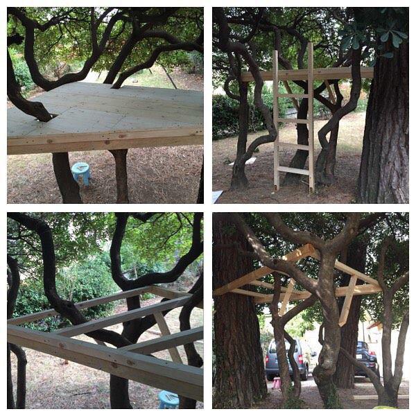 Push treehouse pic