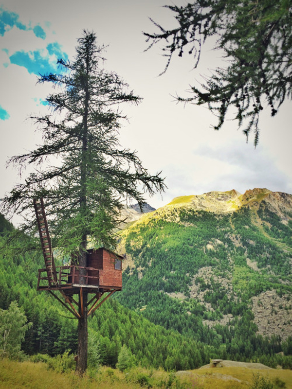 Treehouse in Gran Paradiso National Park near Cogne, Aosta, Italy.