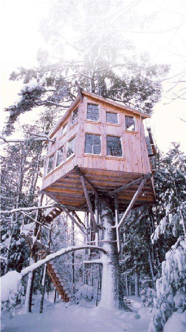 winter stair treehouse
