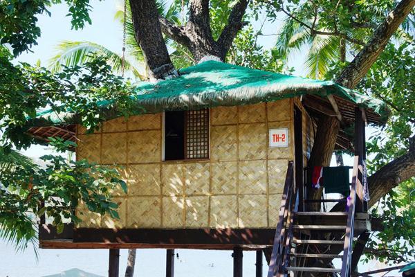 A-treehouse