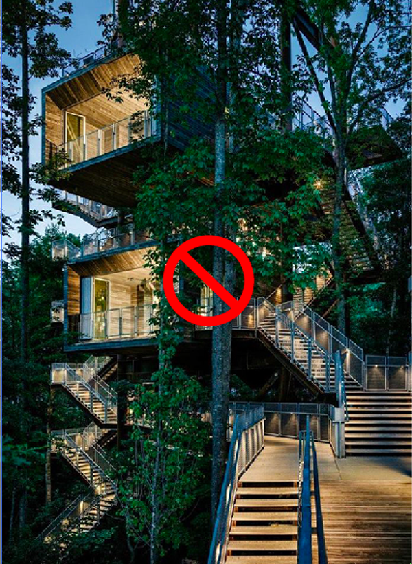 NO TREEHOUSE