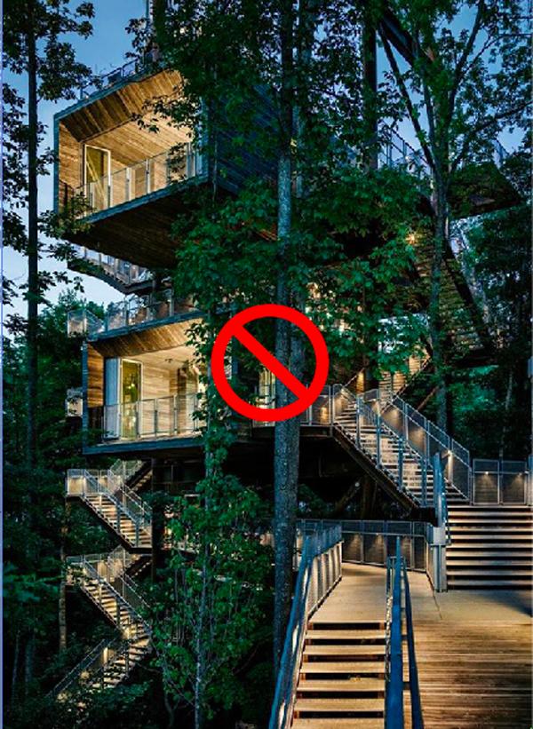 NO TREEHOUSE