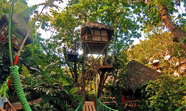 dom treehouse village pic 1
