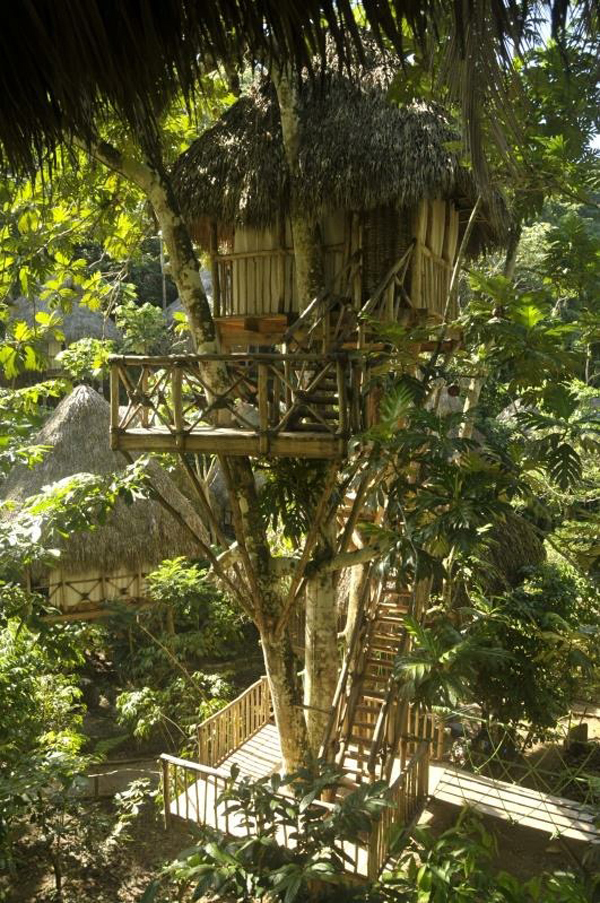dom treehouse village pic 2
