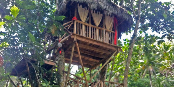 dom treehouse village pic 4