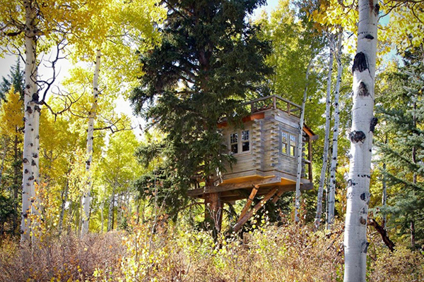 Tree-House-For-the-Grown_ups-in-Colorado-031