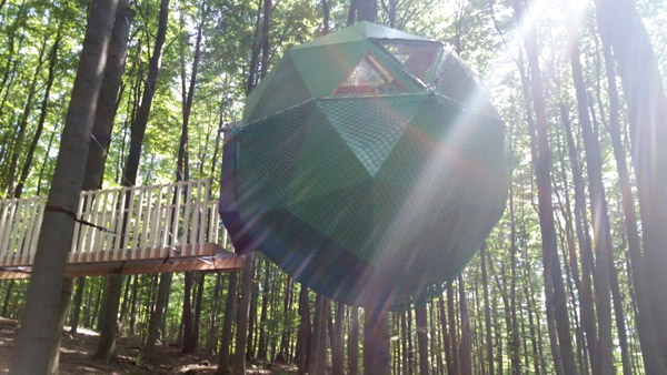 robins nest 4