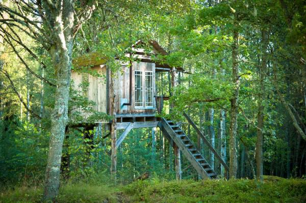 uratur_the little treehouse pic