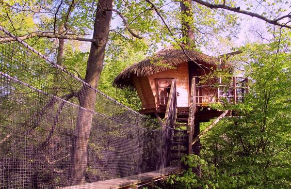cabane-arbres-insolite-zen