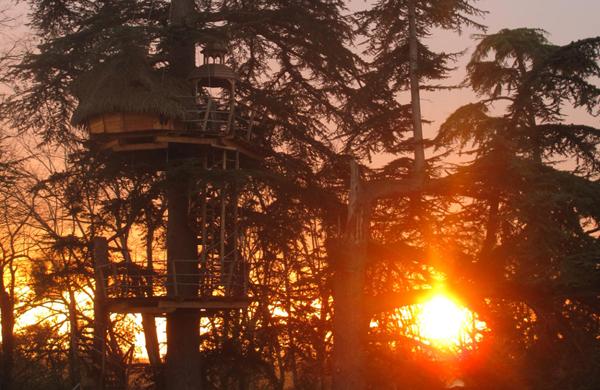 cabane-dans-les-arbres-soleil-couchant-enigma
