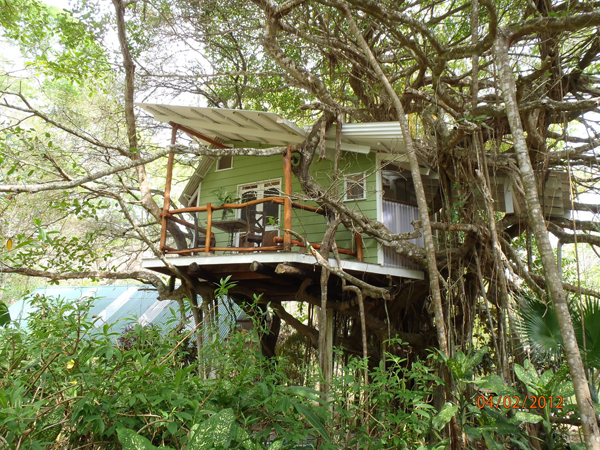 Playa selva treehouse hometreehome for Costa rica tree house rental